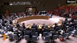 Russian, Ukrainian Ambassadors Trade Blame At UN Session