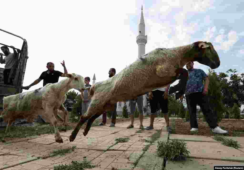 Крымские татары готовятся к жертвоприношению. Саки, 20 июля 2021 года