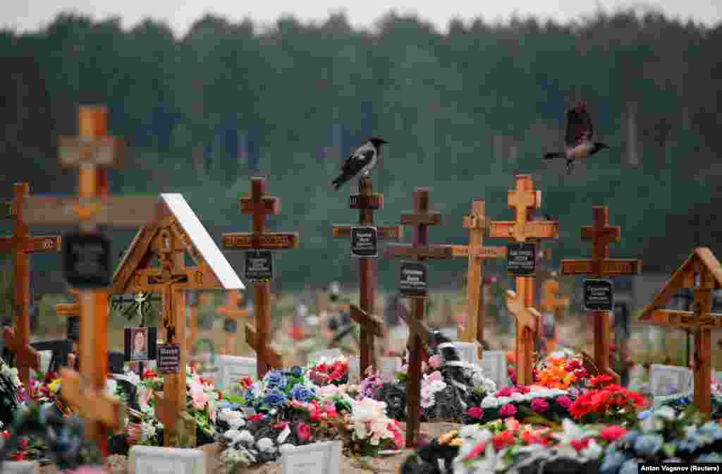 Birds come to rest at a special-purpose section of a graveyard for victims of COVID-19 on the outskirts of St. Petersburg, Russia, on June 25.