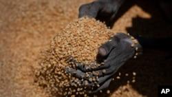 Pământul are alimente cât să hrănească întreaga populație însă acestea nu sunt echitabil distribuite. Din acest motiv, în zone precum Tigray/Etiopia, foametea este un pericol pentru populație.