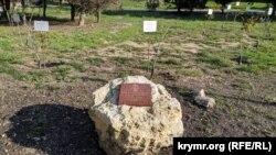 «Аллея звезд» в парке имени Анны Ахматовой