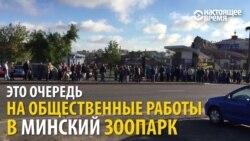 """Как выглядит """"настоящая"""" безработица в Беларуси"""