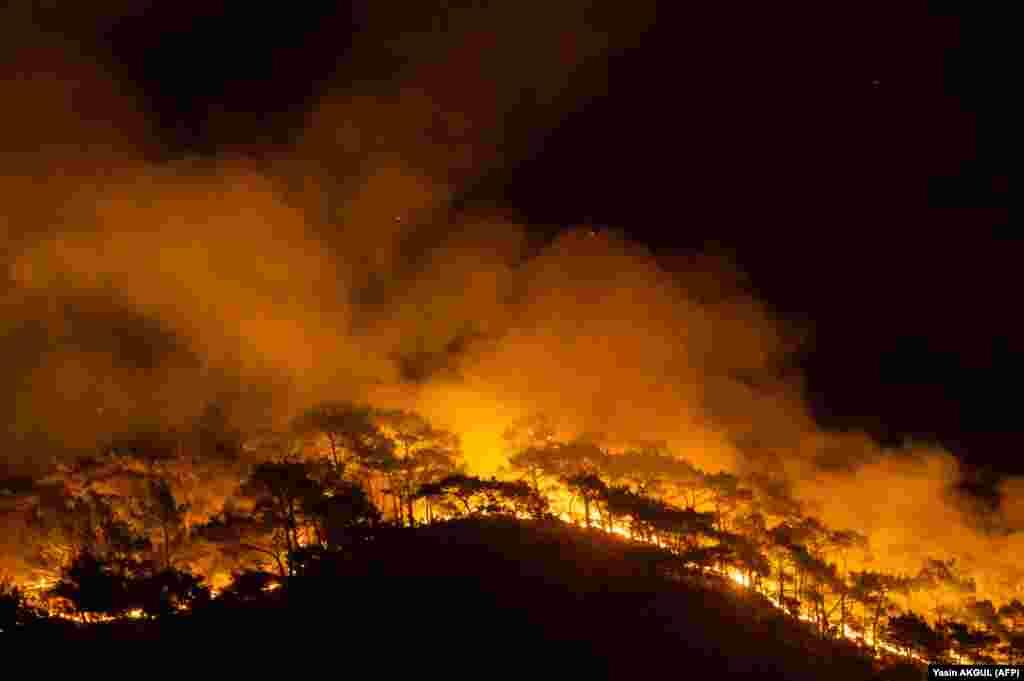 Šuma gori pošto je veliki požar zahvatio mediteransko odmaralište u okrugu Marmaris u Mugli, 1. avgusta 2021. godine.