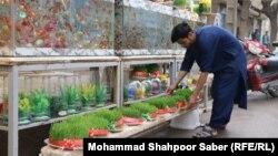 آمادگیها برای تجلیل از جشن نوروز در افغانستان