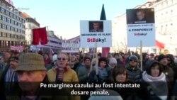 """Criza guvernamentală cehă și """"vacanța"""" în Crimeea"""