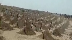 На кладбищах Туркменистана увеличивается количество новых могил