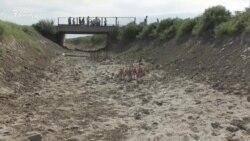 «Искусственная» засуха. Как в Кызылординской области акимат лишил воды тысячи людей