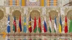 Քննադատություններ ՄՄ անդամակցող երկրների իշխանությունների հասցեին