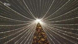 Не только рождественская история ёлки