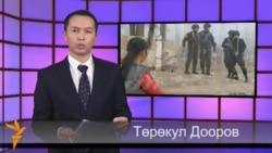 Видео жаңылыктар, 12-ноябрь, 2013