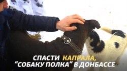 Спасти Капрала, ветерана Донбасса