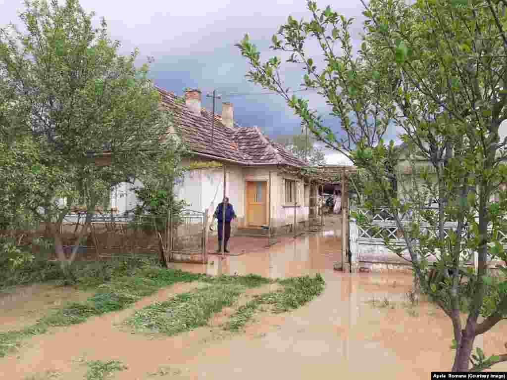 Grădinile au fost acoperite cu apă