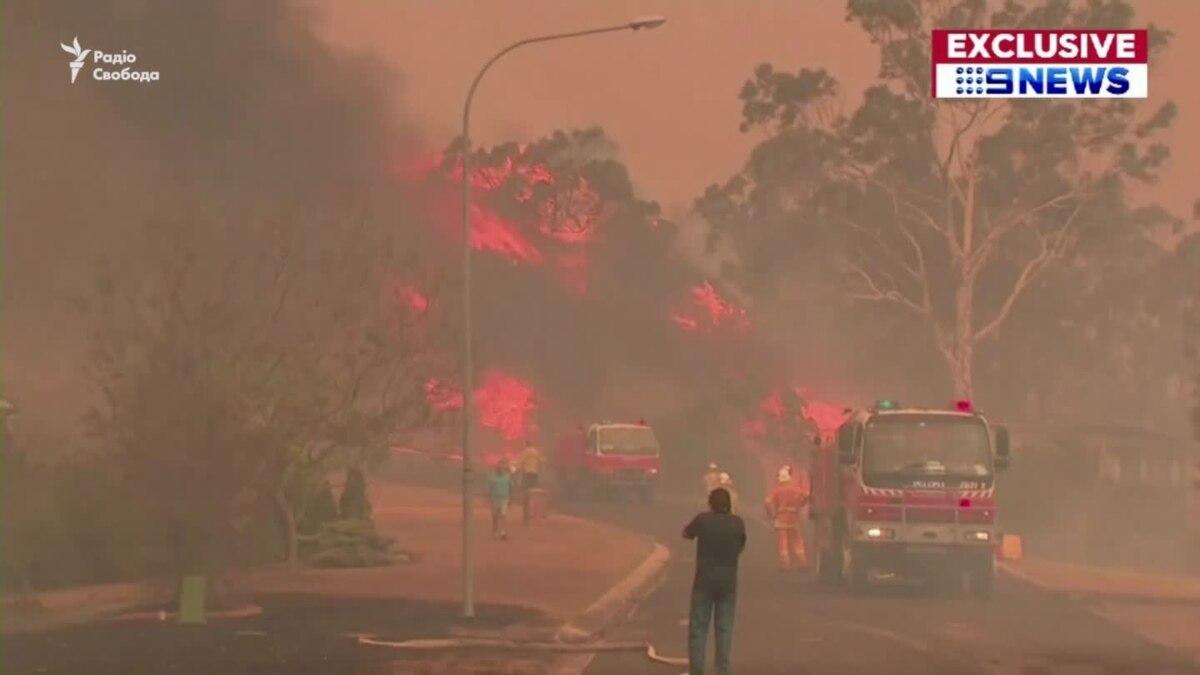 Пять миллионов гектаров сгоревших лесов, 500 миллионов погибших животных – в Австралии не утихают лесные пожары (видео)