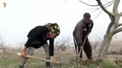Хадича, герой видеосюжета Радио Озоди, получила в дар вожделенный планшет