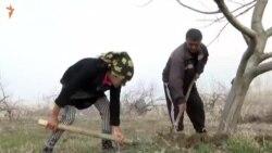 Хадиҷа ба орзуяш расид