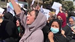 Despite Gunfire And Lashings, Afghan Women's Protests Grow