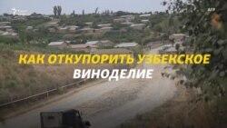 Узбекское пино-нуар: новые конкуренты виноделов Молдовы