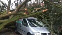 Жертвами сильного шторма в Германии и Нидерландах стали шесть человек