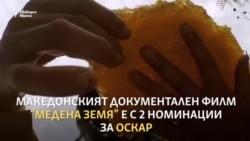 """Как филмът """"Медена земя"""" от Северна Македония впечатли Холивуд"""