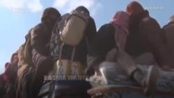 Suspected Bosnian Militants Captured In Syrian Battles