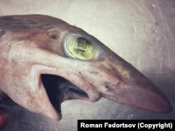 Egy fiatal koboldcápa. Ez a cápafaj akár 4 méter hosszúra is megnőhet. Támadáskor előreugrik állkapcsa.