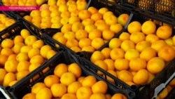 Чем будут заменять попавшие под санкции турецкие овощи? Репортаж Настоящего Времени