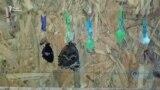 Дом бабочек и отпуск в Болгарии