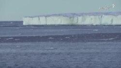 آب شدن یخچالهای طبیعی قطب شمال