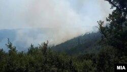 Пожар на планината Готен, кај селото Нивичино во Општина Василево