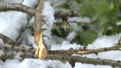 Aprilski snijeg u BiH