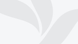 Від чого залежить ціна на бензин в Україні? (I)
