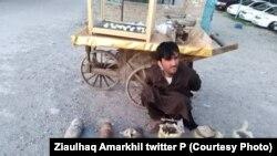یک عضوگروه داعش که در ولایت ننگرهار دستگیر شده است.