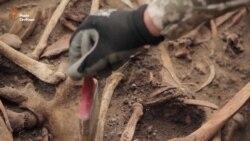 «Пошуковики» знайшли в зоні АТО масове захоронення часів Другої світової (відео)