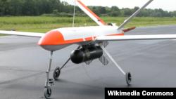 Griffon tipli dronlardan biri (Arxiv fotosu)