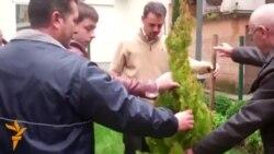 03.12.2014 Ден на дрвото, Ден на лицата со попреченост