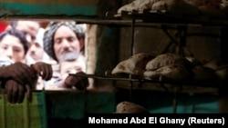 Scumpirea vine în contextul în care 30% din populația Egiptului trăiește sub pragul sărăciei.