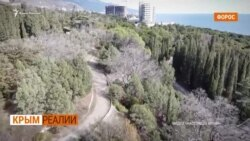 В Форосе уничтожают парк: столетние деревья идут под бульдозер | Крым.Реалии ТВ (видео)