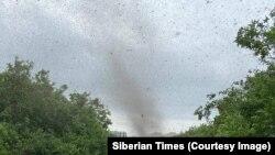 Oroszország, Kamcsatka: szúnyograjok az égen