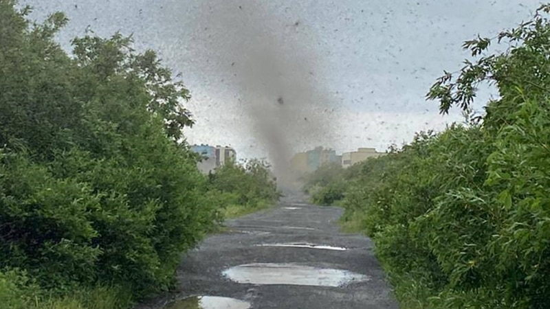 Mosquito 'Tornadoes' Storm Russia's Far East