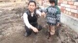 Киотодон көчөт алып келген жапон келин