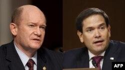 Основните вносители на законопроекта са сенаторите Крис Кунс (демократ) и Марко Рубио (републиканец)