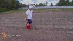 Александр Лукашенко картошка терди