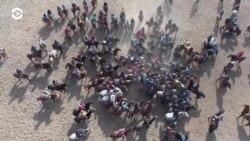 «Кок-бору»: во что играют кочевники (видео)