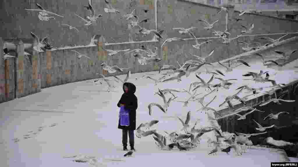 Дівчина годує чайок біля пам'ятника Затопленим кораблям