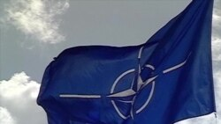 Грузию пока не берут в НАТО