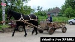 Moldova, People and places, Cornești, raionul Ungheni, 3 iunie 2021
