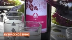 Кузбасский пенсионер засадил огород виноградом и делает из него домашнее вино