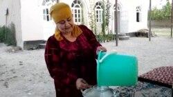 Тоҷикистон ба Русия говдӯшҳоро мефиристад