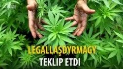 """Gyrgyz resmisi: """"Syýahatçylyk üçin"""" marihuana legallaşdyrylmaly"""