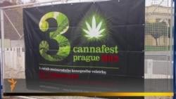 Фестиваль конопли Cannafest в Праге